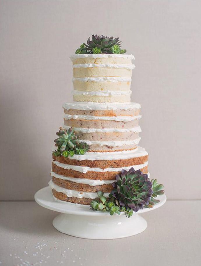 tort plante suculente-nunta in gradina (22)