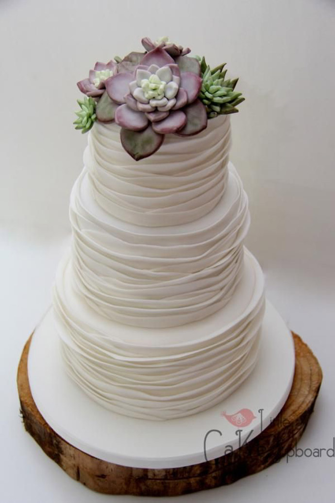 tort plante suculente-nunta in gradina (23)