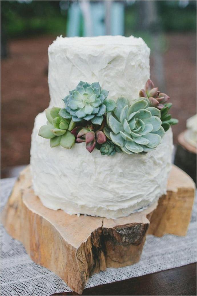 tort plante suculente-nunta in gradina (24)
