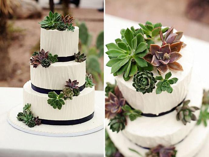 tort plante suculente-nunta in gradina (4)