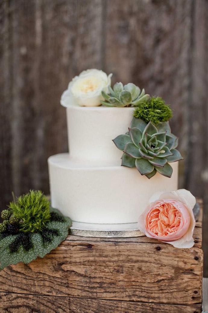 tort plante suculente-nunta in gradina (6)