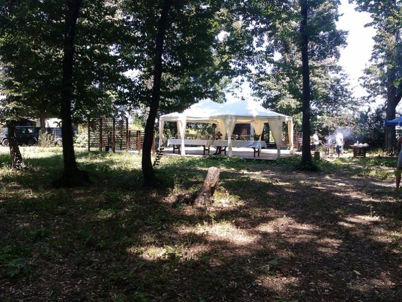 TreeHouse Forest-nunta in gradina (4)