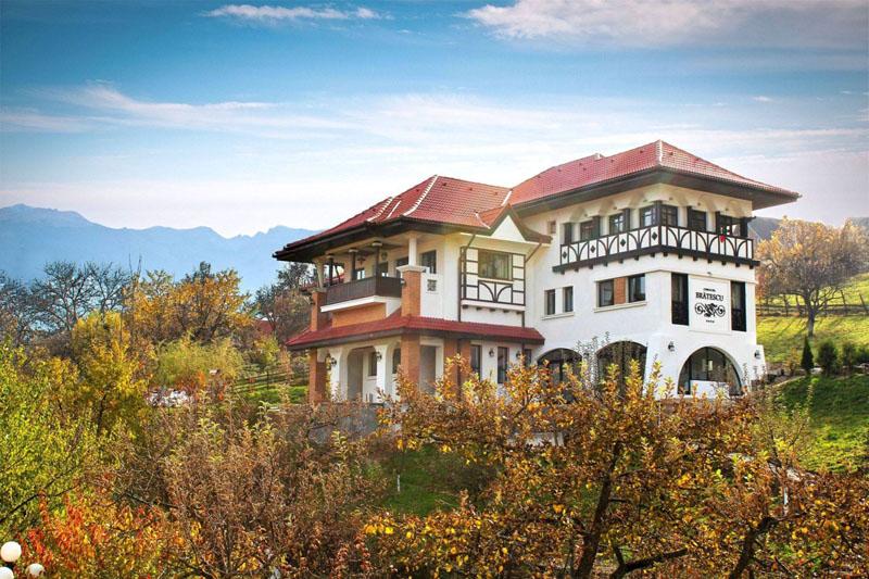 Conacul Brătescu-nunta in gradina (15)