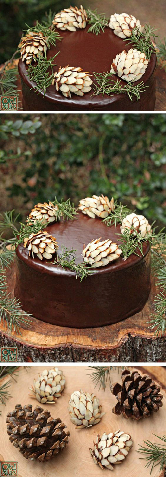 ciocolata-nunta in gradina (5)