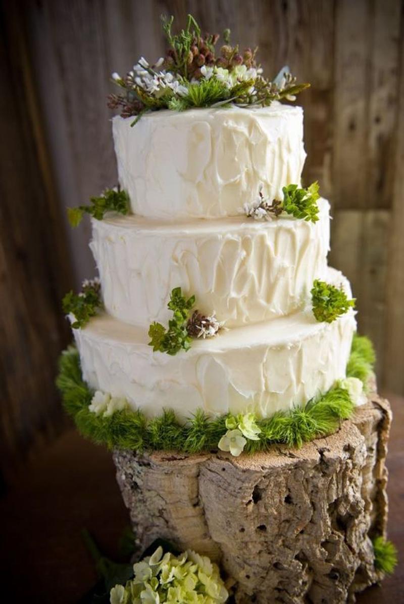 padure-nunta in gradina (26)
