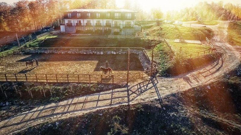 la potcoava- runcu-nunta in gradina (13)